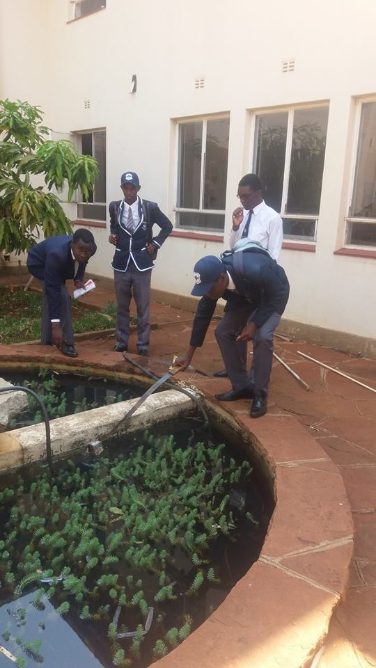 2016_2017_prefects_cleanup