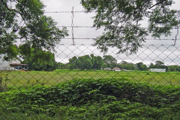 2010_cricketfield_fence
