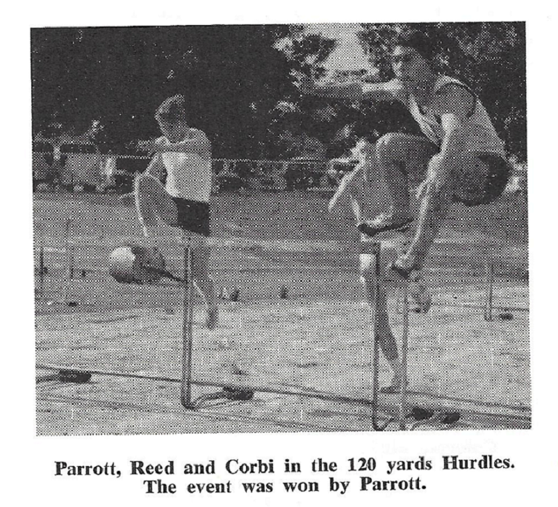 1963_athletics_hurdles_parrot_corbi